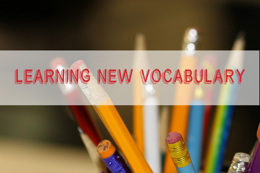 Learning new vocabulary and having fun